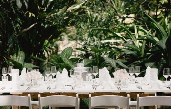Heiraten in der Biosphäre Potsdam